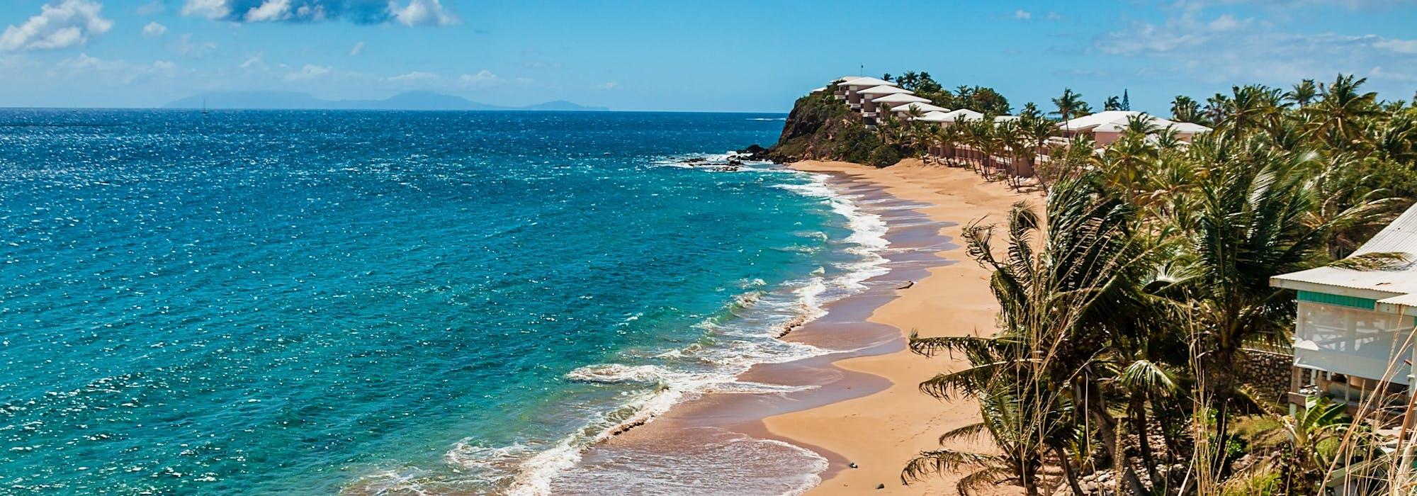 Vågor rullar in på stranden och till höger vajar palmer i vinden.