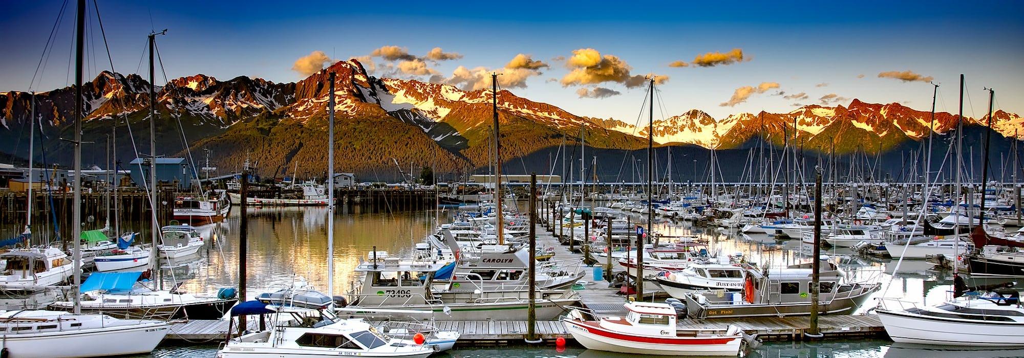Seward's småbåtshamn med mängder av segelbåtar i förgrunden och snötäckta berg i bakgrunden.