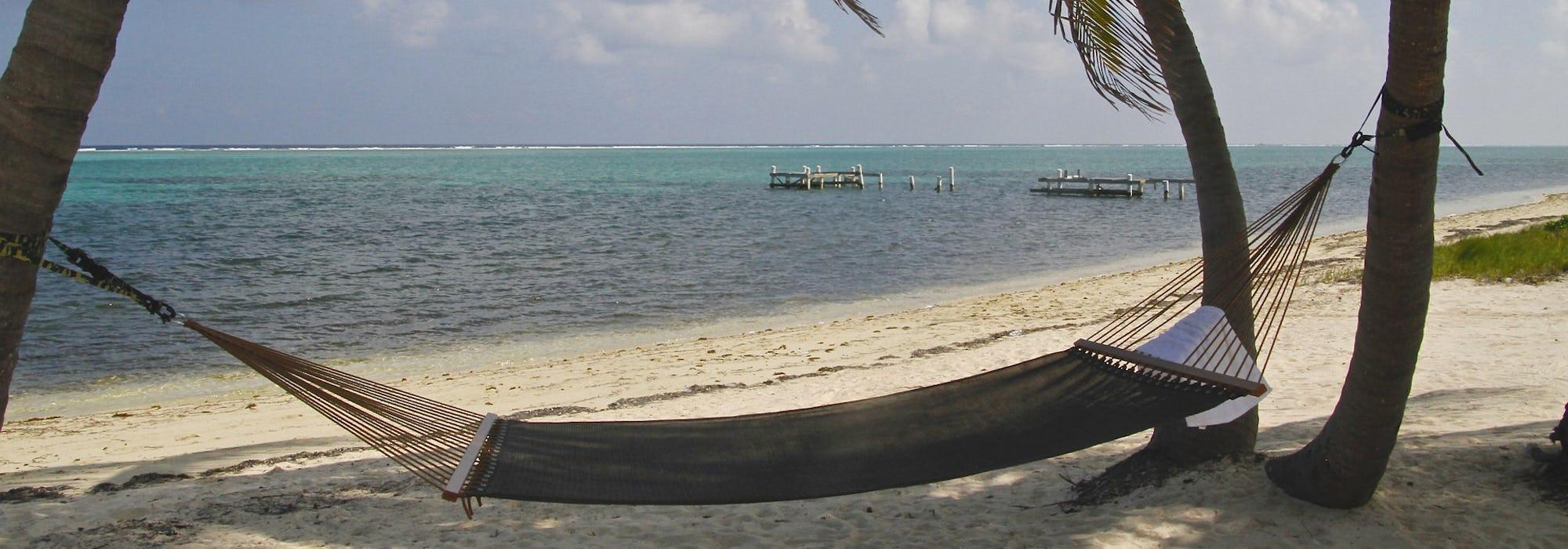 En hängmattan mellan två palmer på stranden med havet som sköljer in.