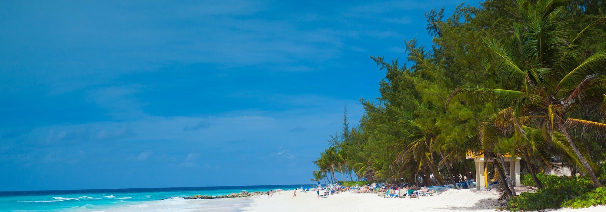 Bild på en snövit strand, palmer och ljusblått vatten i Barbados.