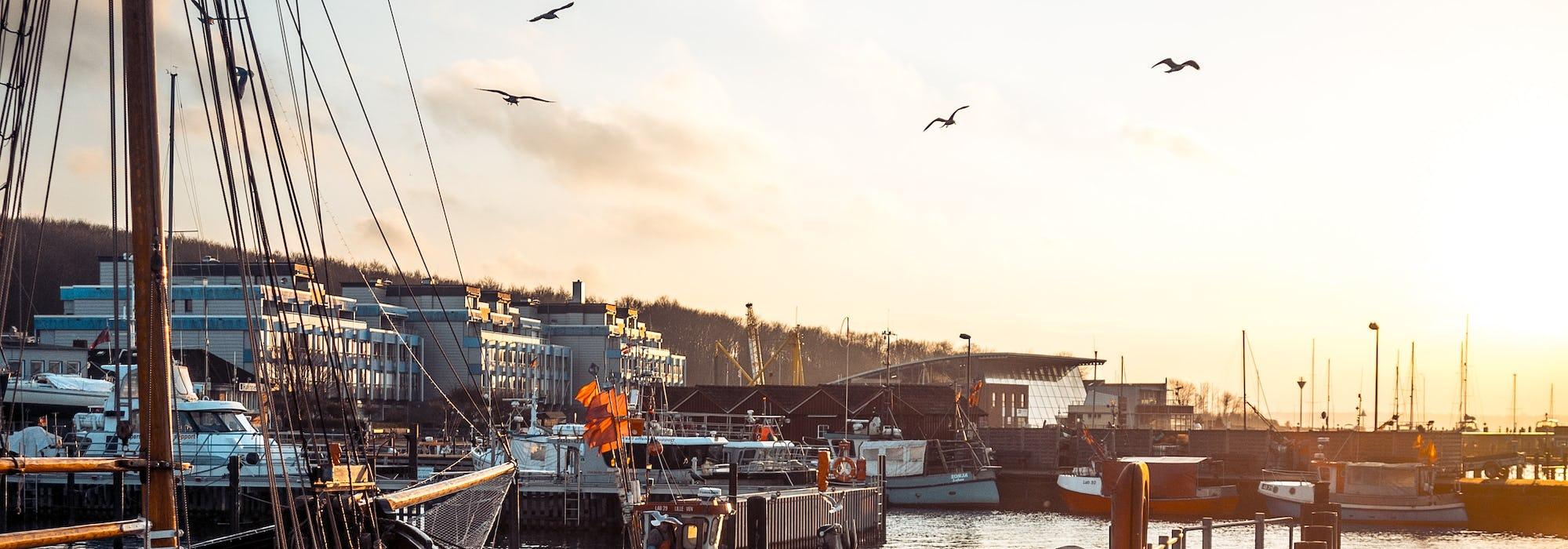 Kiels småbåtshamn med båtar och fåglar på himlen.