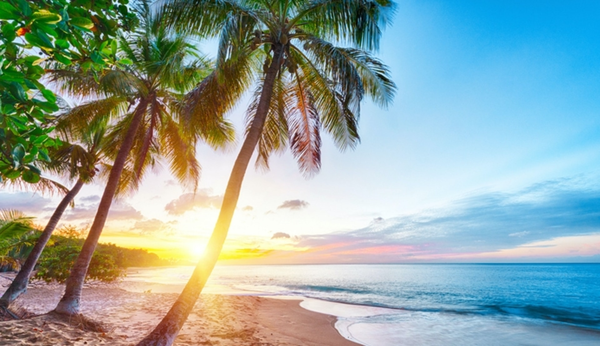 Upplev Karibien med MSC Seashore