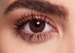 Brown eyes before wearing SWATI Honey - Hazel Brown Coloured lenses
