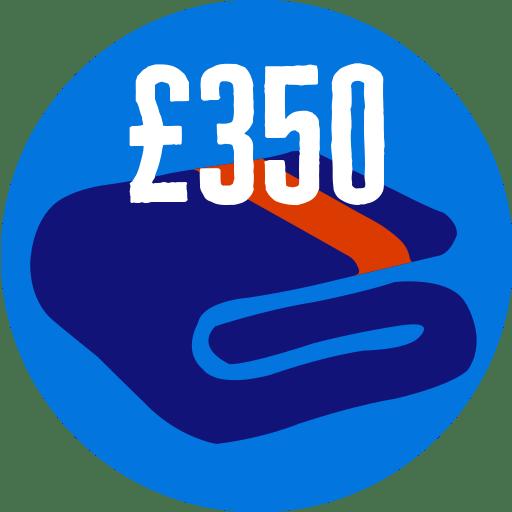 Raised £350
