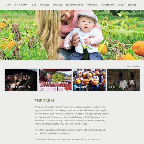 Portfolio Screenshot 4 for Carrigan Farms