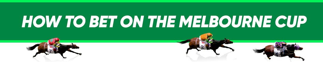 Melbourne cup betting slip calculator top 10 online betting