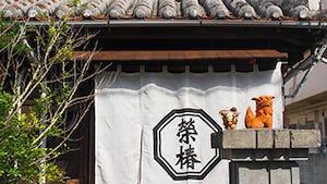 榮椿(えいちん)
