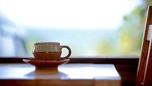 songbird cafe(ソングバードカフェ)
