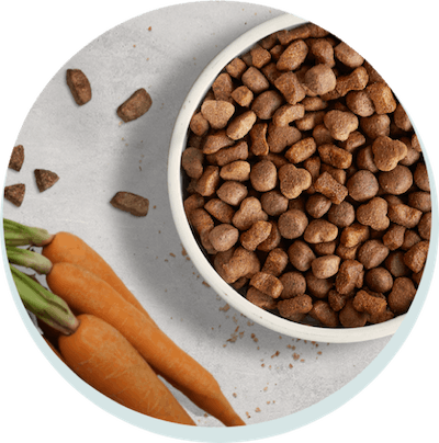 Tailored dog food, the tails.com way