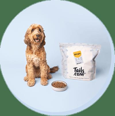 Image of Bingley the dog with a food bag