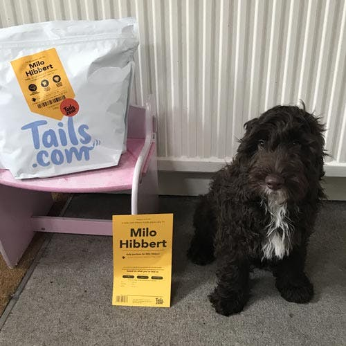 Milo the Cockapoo's review of tails.com