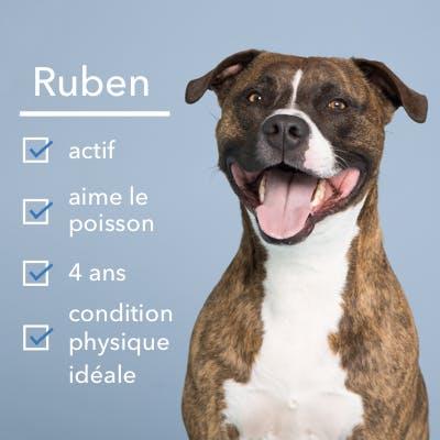 Ruben qui est heureux
