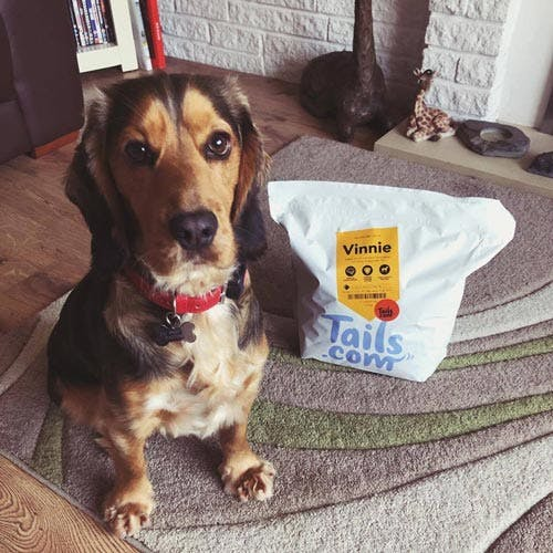 Vinnie the Cocker Spaniel's review of tails.com