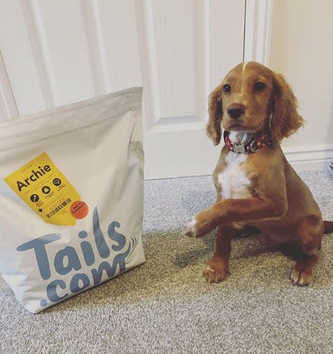 Archie and tails.com dog food