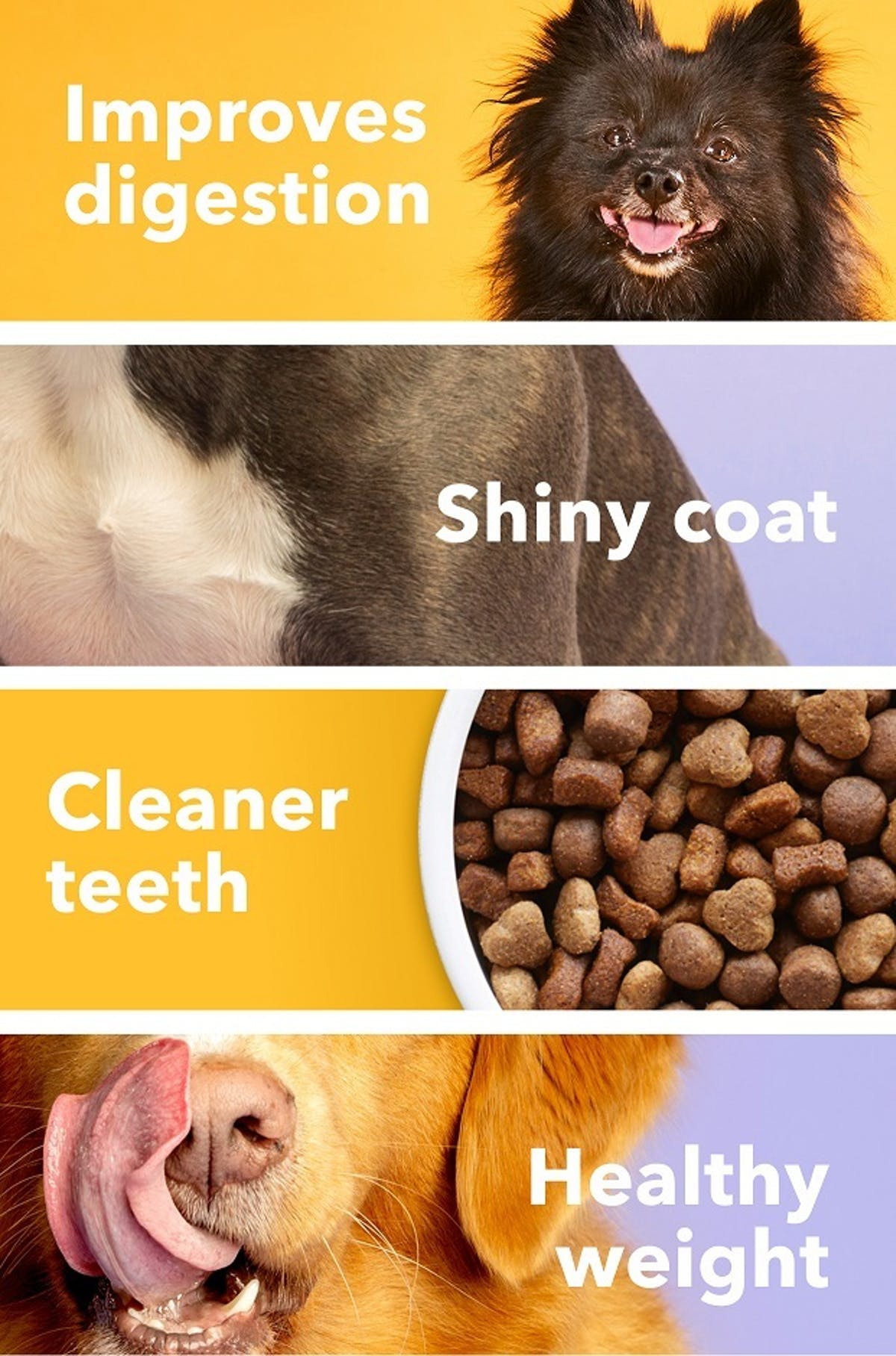 tails.com benefits for your dog