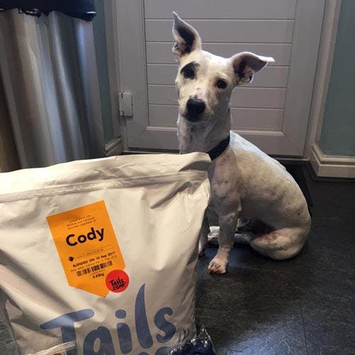 Cody the Jack Russell Terrier's review of tails.com