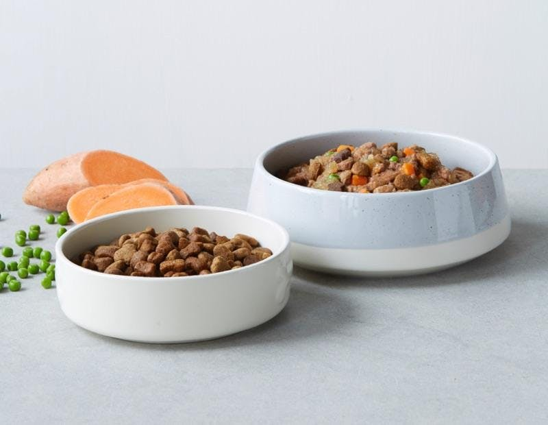 bowls of tails.com tailor-made dry and wet dog food