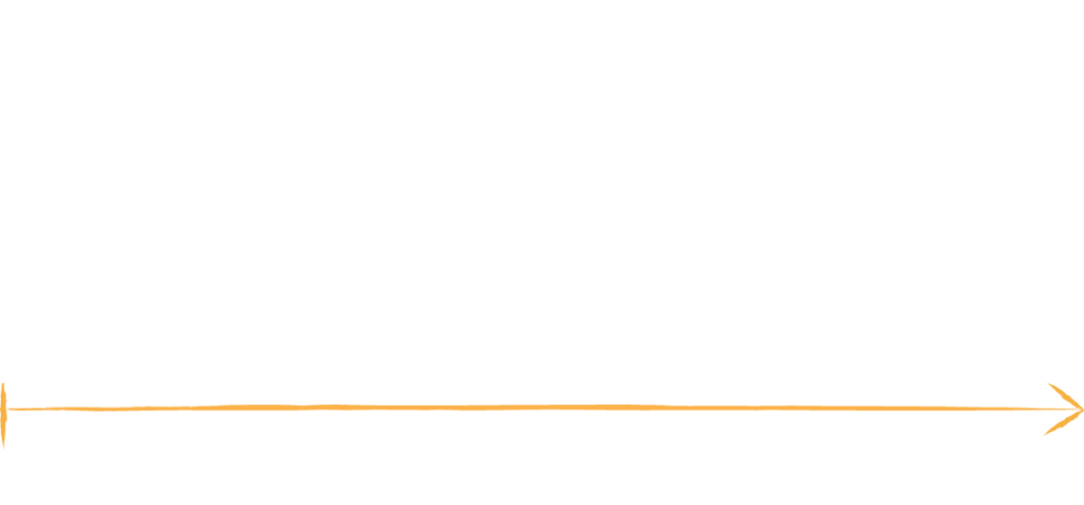 An image showing the three main life stages a dog. 6-14 weeks old, 14 weeks onwards and adulthood.