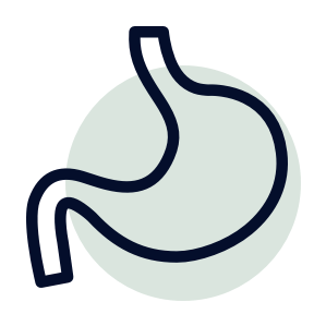 Digestion icon