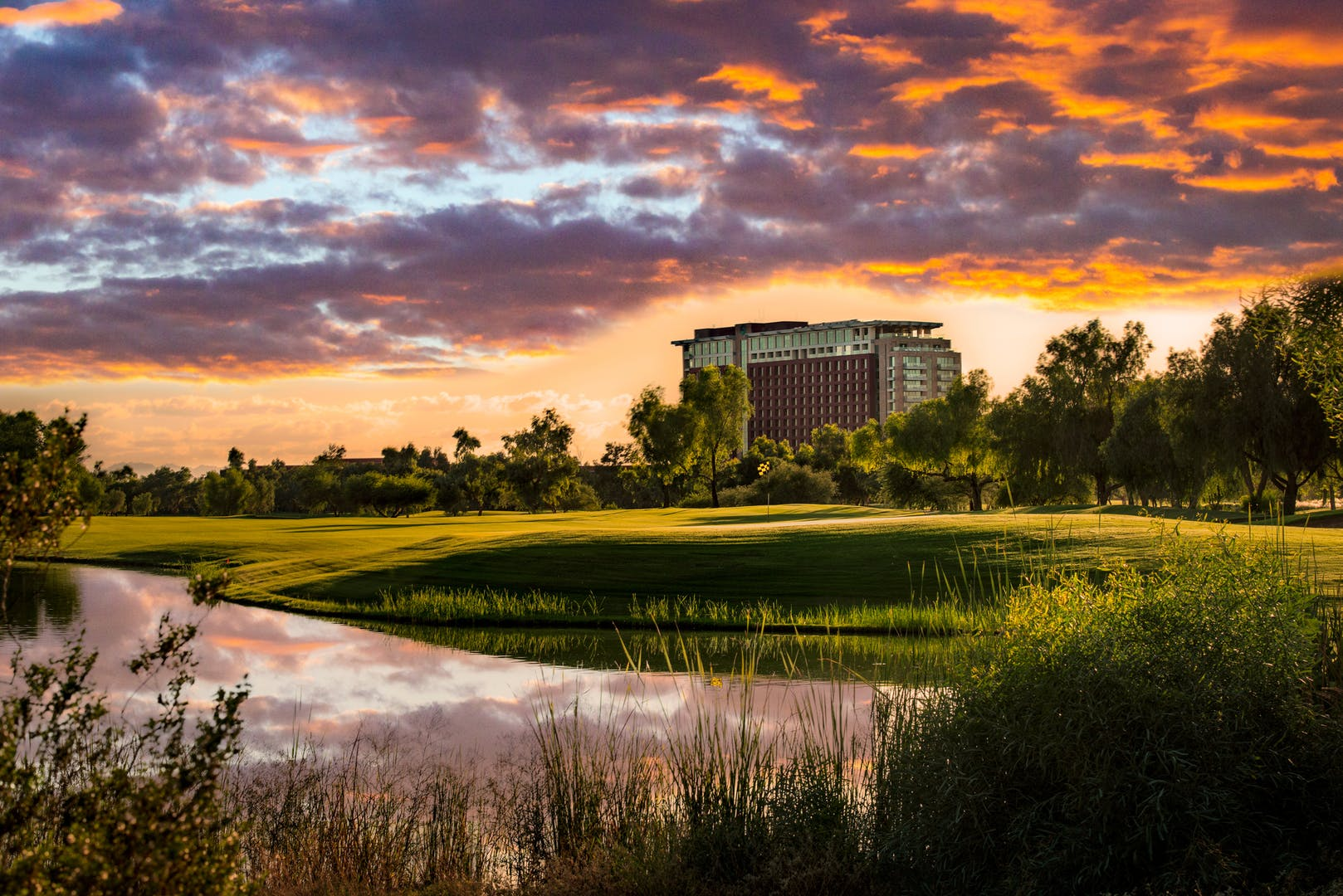 Talking Stick's landscape with the resort in the background