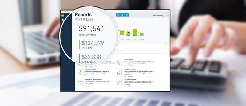Profit and Loss Statement Amazon Seller QuickBooks