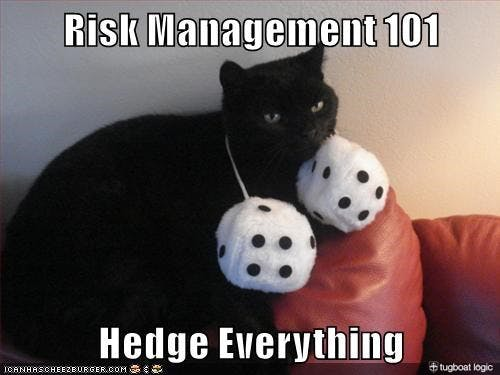 Conducting risk assessments is so easy, even Cheezburger Cat can do them (source: Tugboat Logic).