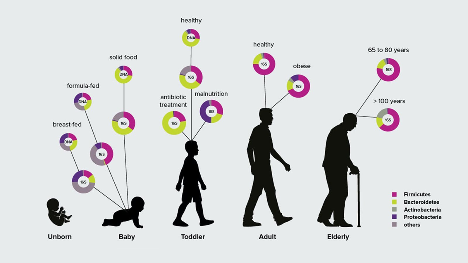 人類微生物群的特徵隨著時間及環境而變化