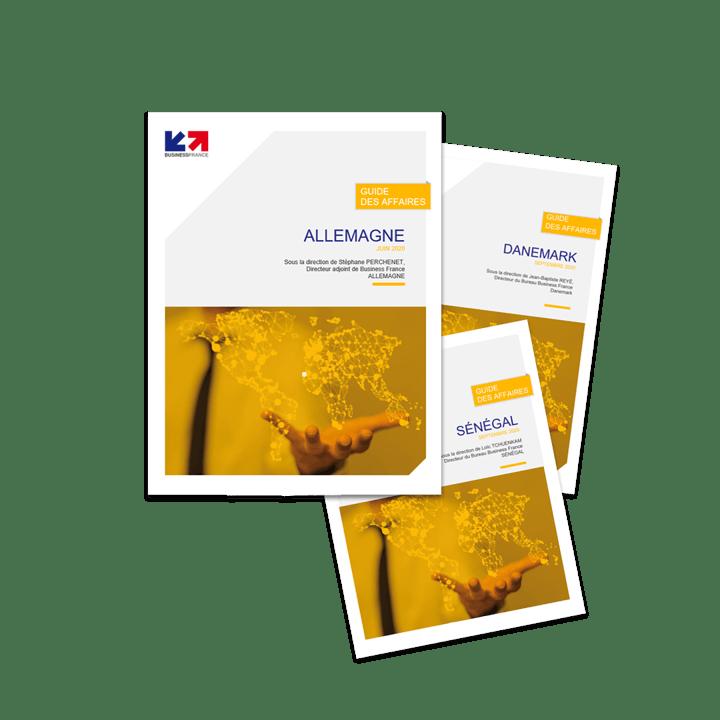 Les guides des affaires fournissent aux entrepreneurs les informations nécessaires pour concevoir et affiner leur stratégie d'approche et d'implantation sur les marchés étrangers.