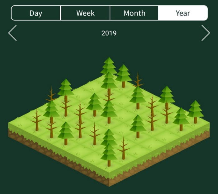 forest, application, productivity