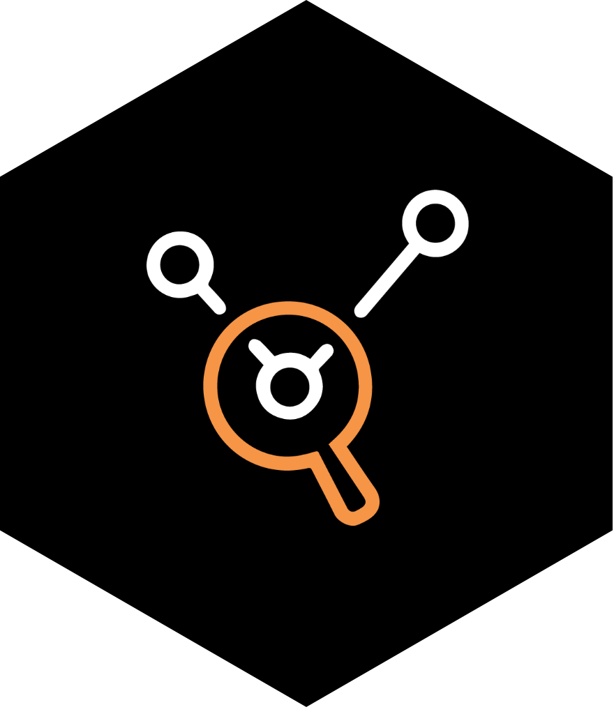 Cybersecurity assessment icon