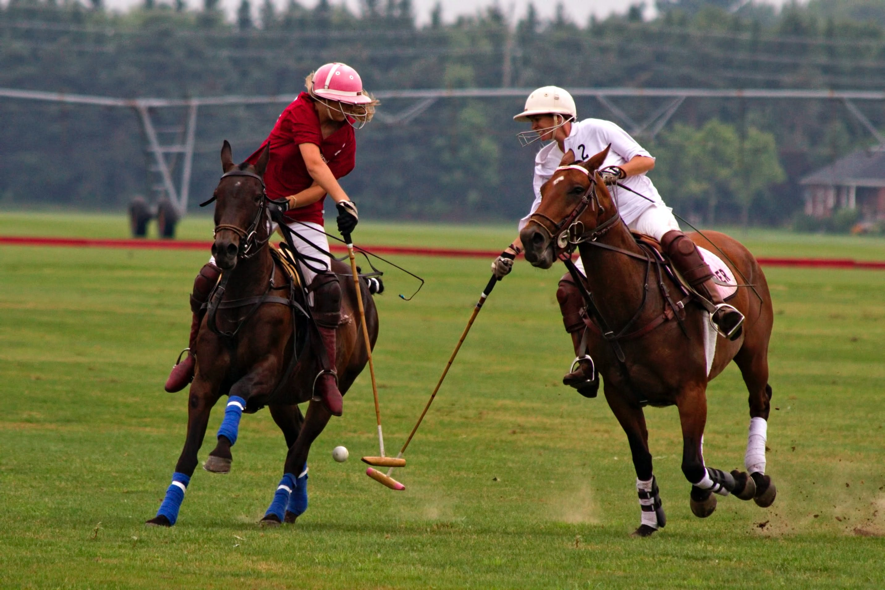 Two polo players going for the ball