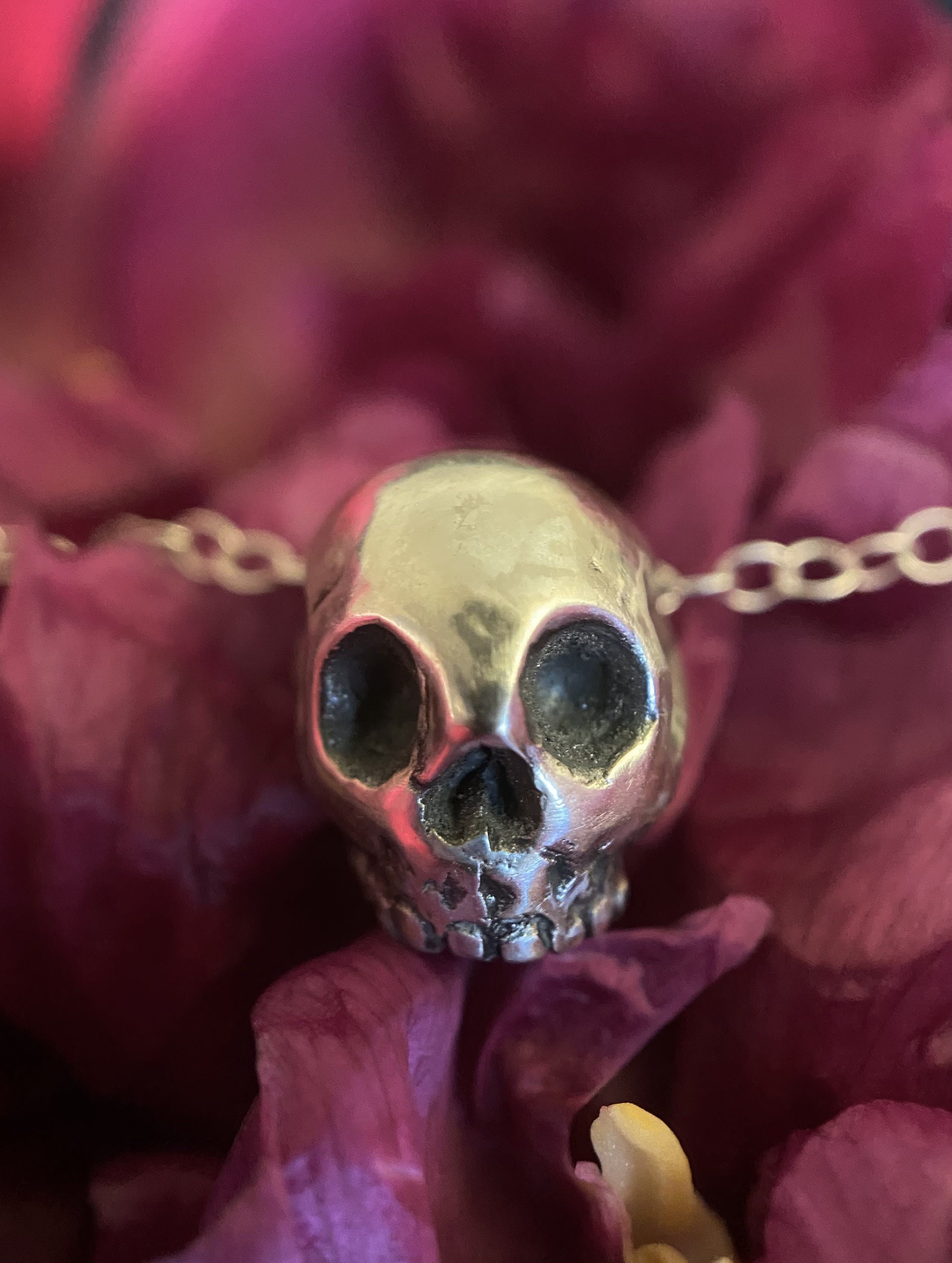 A small skull, with no lower jaw made from silver, with blackened details in the eye and nose sockets and teeth, on a silver chain.