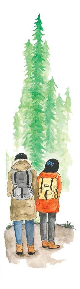 Two hikers stand before tall pines