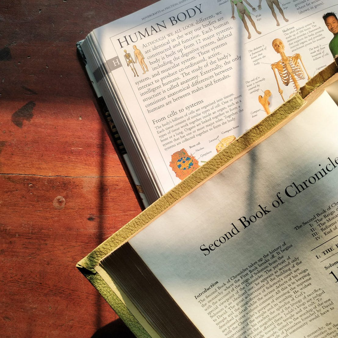 The Bible open on top of an open science textbook.