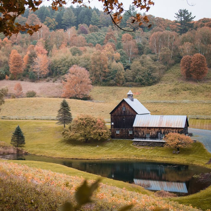 Regenerative Agriculture in Rural Towns is All About Community