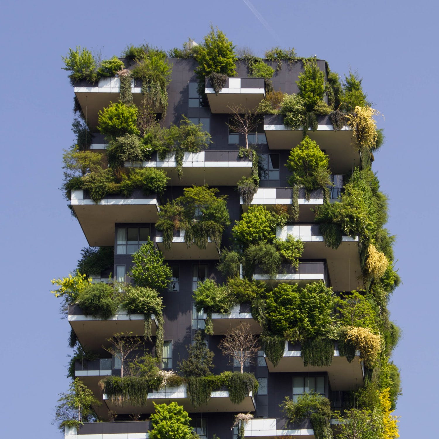 Architectural Solutions to Climate Change and Humanity's Future