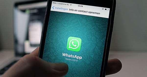 WhatsApp Business app rollout