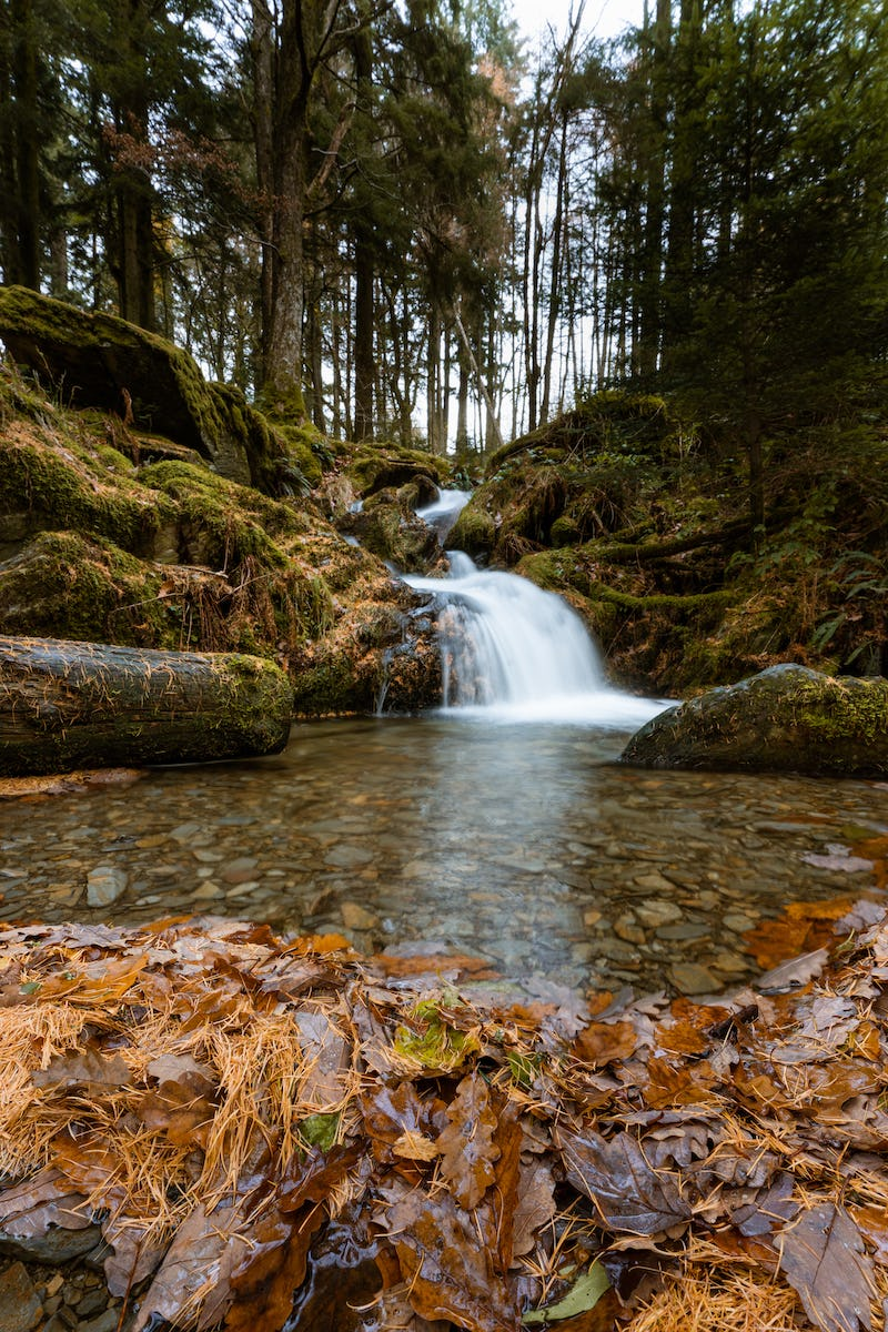 An autumn waterfall