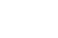 SockShop WildFeet logo