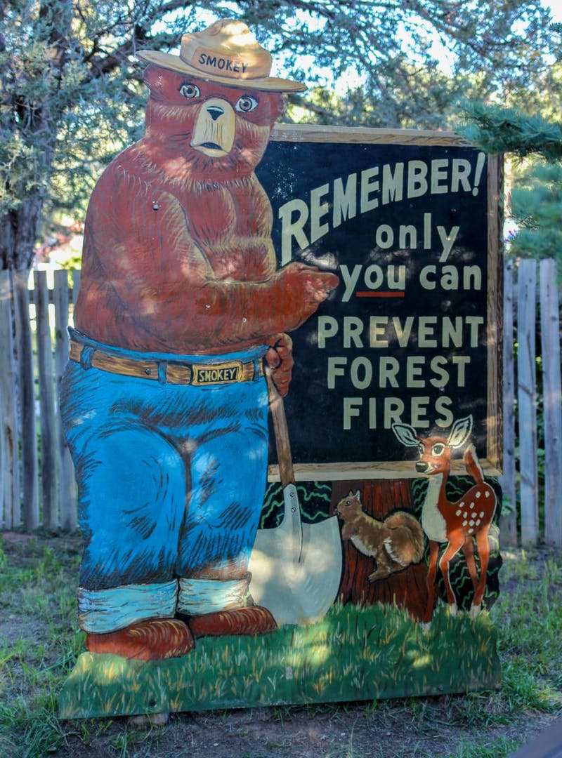 Smokey Bear sign reading: Only you can prevent forest fires.