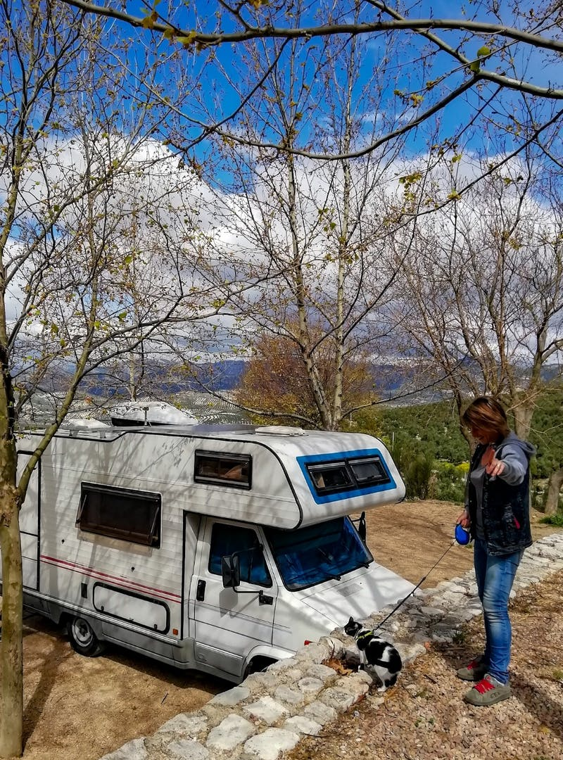 Chiara taking her cat for a walk on a leash with the RV in the background.