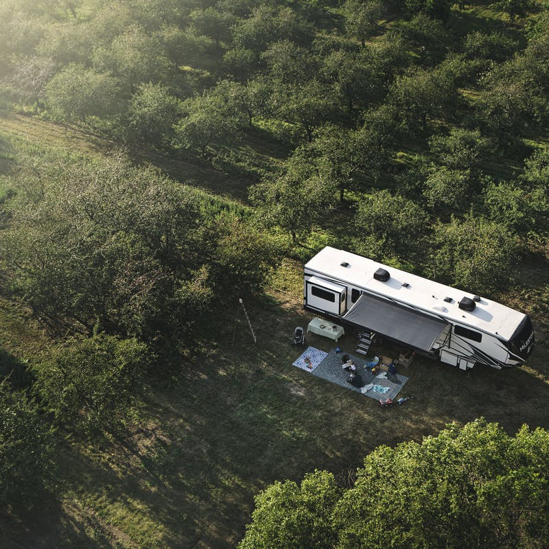 An RV parked in an orchard.