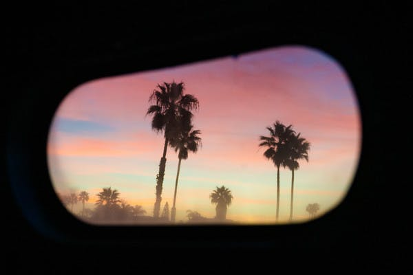 Palm trees at sunset, seen through an oblong, rounded Airstream Travel Trailer RV window.
