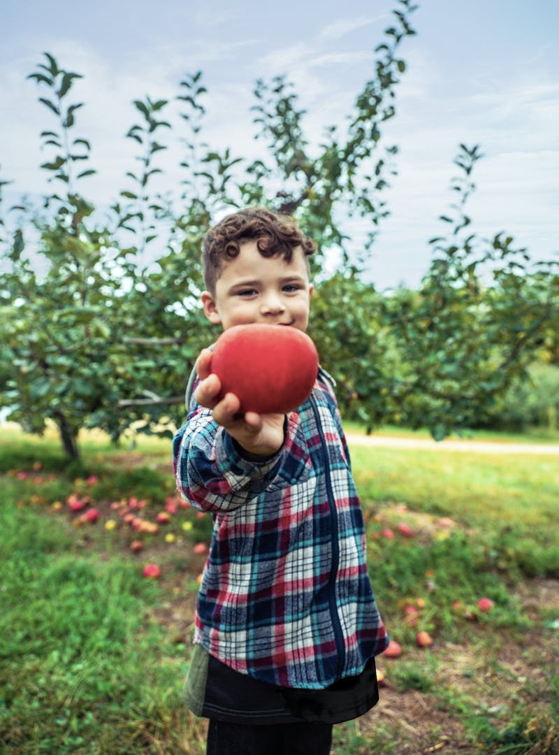 Julian standing in an apple orchard, holding up an apple to the camera.