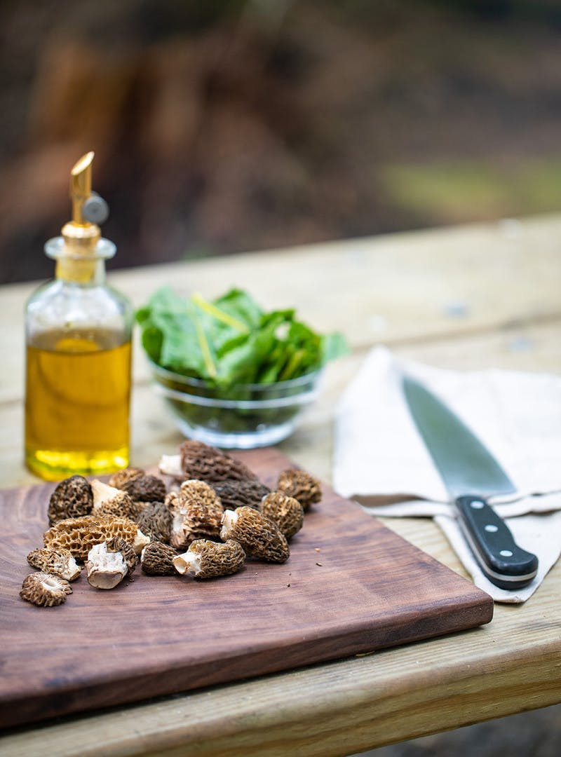 Fresh morels on a cutting board, with a knife, a glass bowl of chard and bottle of olive oil.