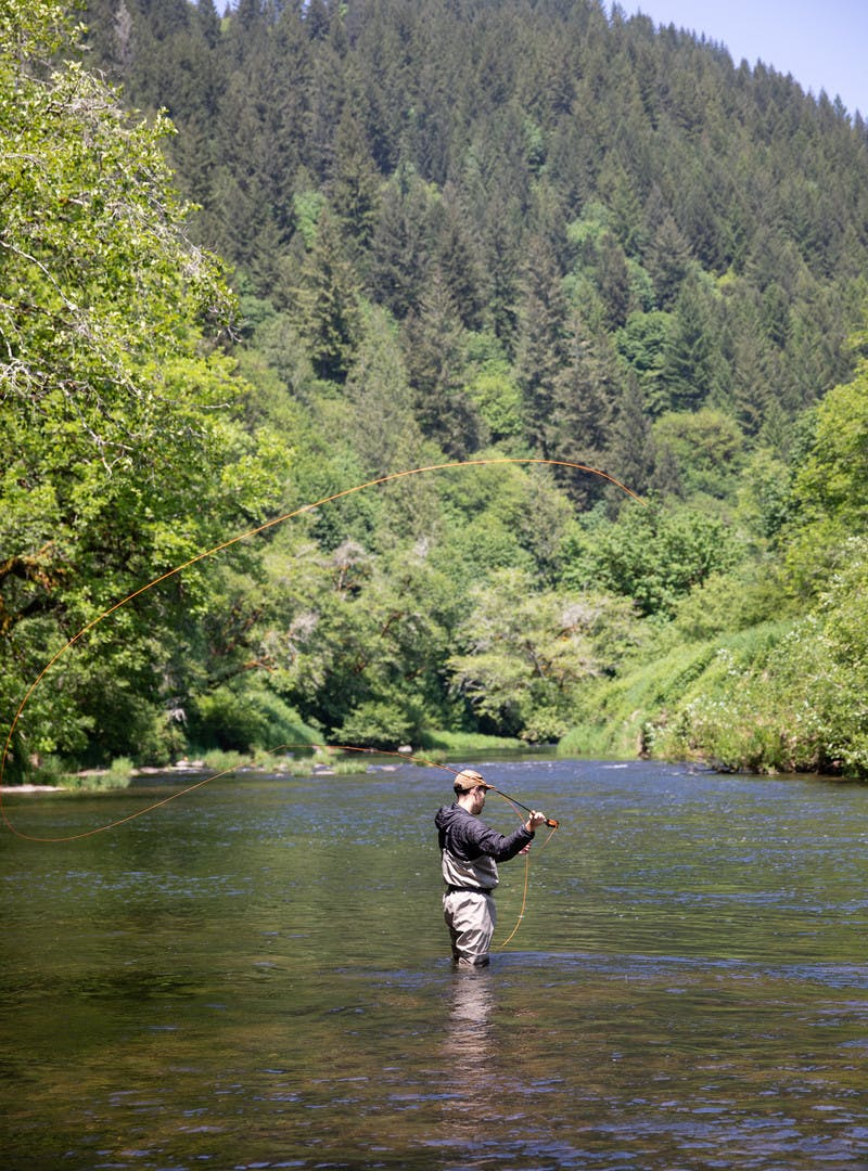 Fisherman knee-deep in river water, casting pole in the Alsea River, surrounded by pine trees.