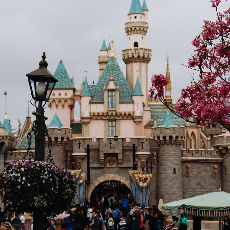 Shot of Disneyland Magic Castle in California with flowering tree and tall black lamppost
