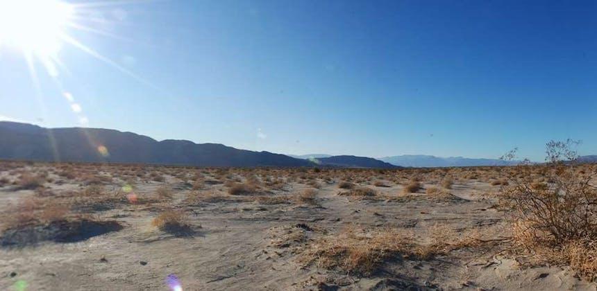 A dusty desert landscape at Ocotillo Wells SVRA.