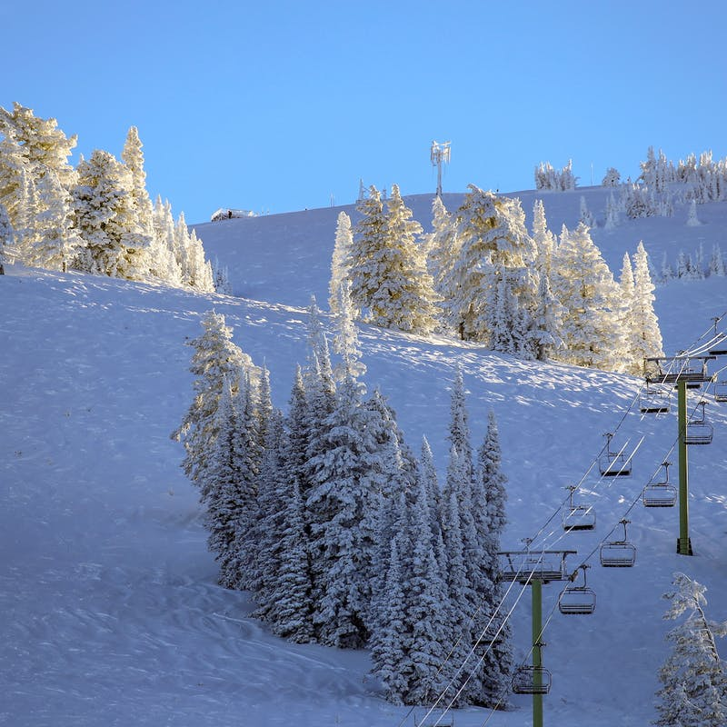Chair lift going up snowy mountain with snow-covered pine trees