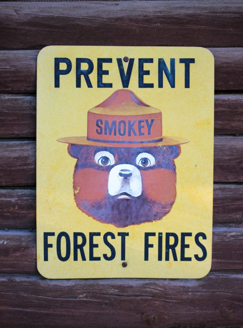 Yellow pop art style Smokey Bear sign
